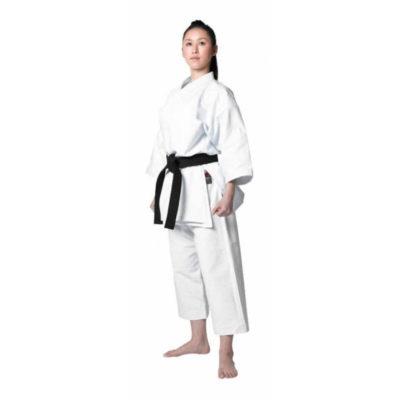 Karateguis